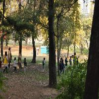 """2012/10/31 10시 """"숲 속 친구, 참이와 토리""""- 가락어린이집"""