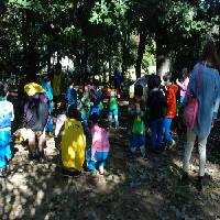 """2013/10/16 10시 """"숲 속 친구, 참이와 토리"""" - 푸른꿈유치원"""