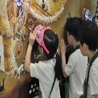 2016/05/19 11시 성내삼어린이집 꿈나무오감체험교실