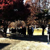 2019/11/20 성문밖학교 몽촌토성투어프로그램