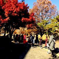 2019/11/20 방배초등학교 몽촌토성투어프로그램